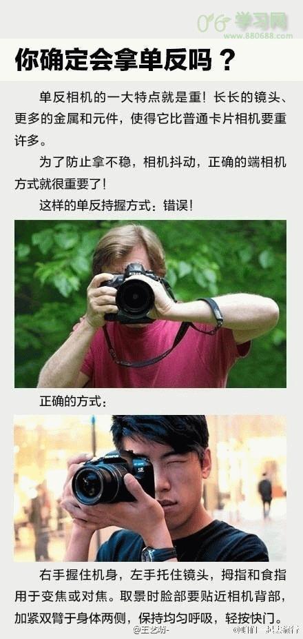 摄影教程 摄影技巧 > 浏览文章  大话仙剑官网,丽纹龙蜥,吴登博    我